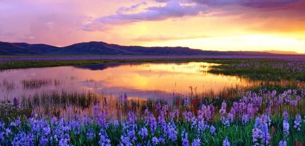 Camas Prairie at Sunset, Idaho, USA